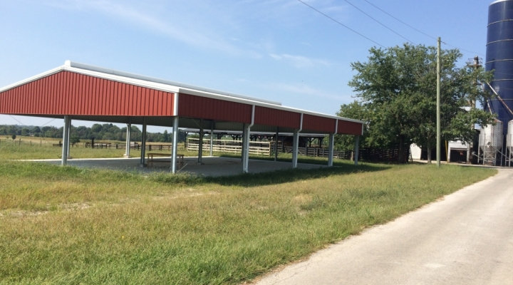 New Beef Handling Facility